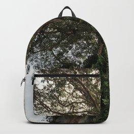 Trees in Hai Tac Backpack