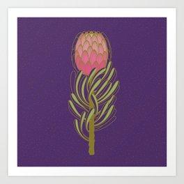 Protea Flower Art Print