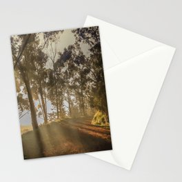 The firts light Stationery Cards