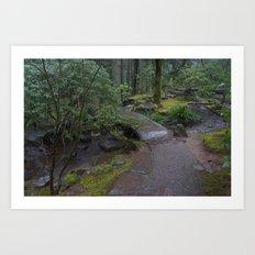 Zen Bridge Art Print