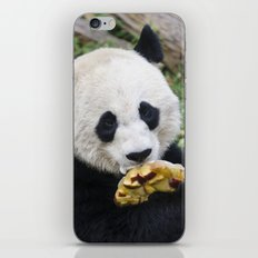 Panda Likes iPhone & iPod Skin