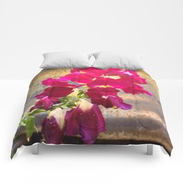 Snap dragon Comforters