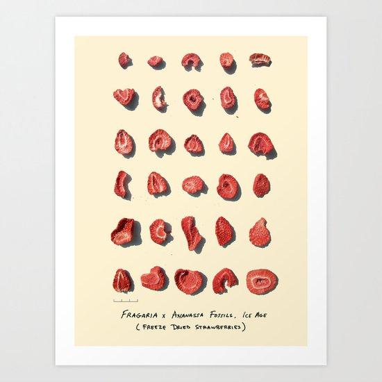 Paleontologist for a Day Art Print