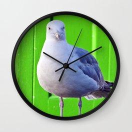BALTIC SEAGULL Wall Clock