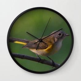 A Female American Redstart 2 Wall Clock