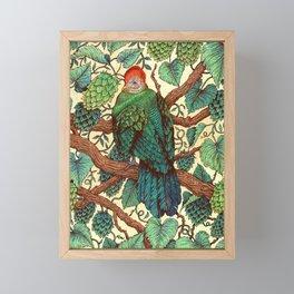 Tipsy Turaco Framed Mini Art Print