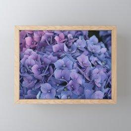 Purple Hydrangea Framed Mini Art Print