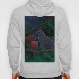 Crow perched on pomegranate tree branch Munin crow of Odin Hoody