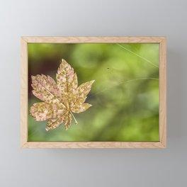 Suspended Framed Mini Art Print