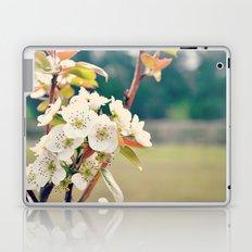 Pear Blossoms Laptop & iPad Skin