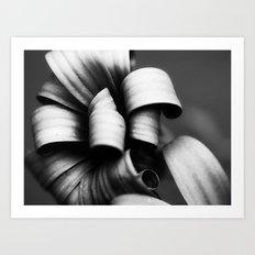 Desaturated Daisies Art Print