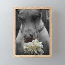 Smell Spring Framed Mini Art Print