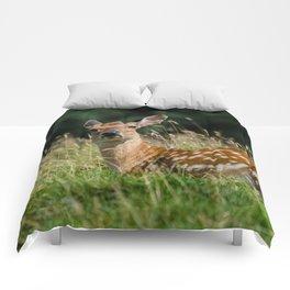 Fallow deer doe Comforters