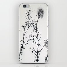 Gunpowder Branches iPhone & iPod Skin