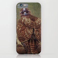 Young Red Tail Hawk Slim Case iPhone 6s