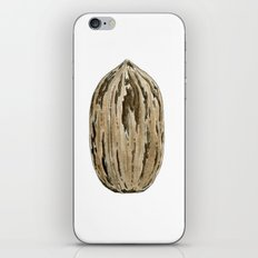 Pecan Nut iPhone & iPod Skin