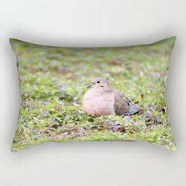 Mourning Dove Resting Rectangular Pillow