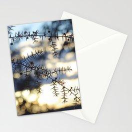 Dusk Wattle Stationery Cards