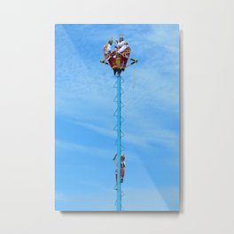 Flying artist collection _01 Metal Print