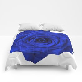 blue rose Comforters