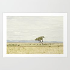 tree of life::kenya Art Print
