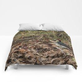 Acorn Woodpecker Comforters