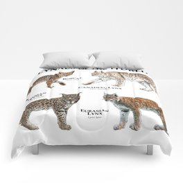 Lynxes of the World Comforters