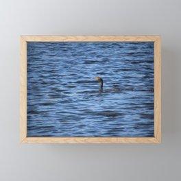 Cormorant Floats In The Blue Water Framed Mini Art Print