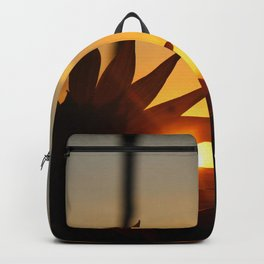 Solar Leak Backpack
