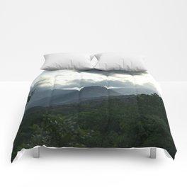 Picnic Comforters