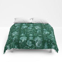 Ernst Haeckel - Siphonophorae Comforters