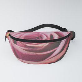 Close up Rose 3 Fanny Pack