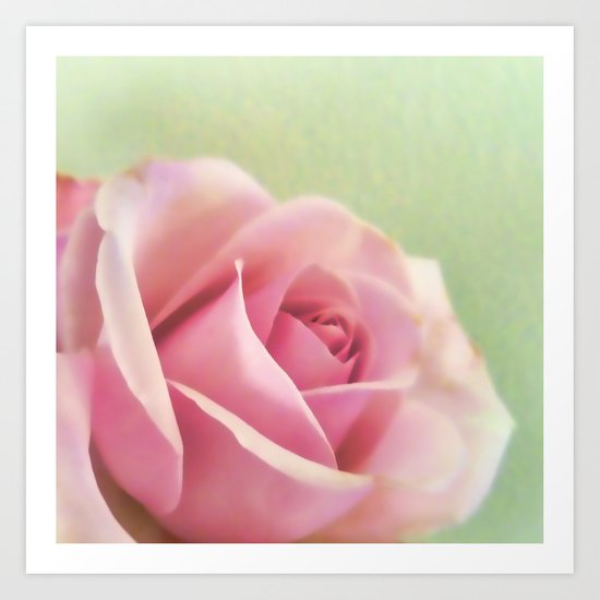 Painted rose Art Print