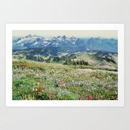 Wildflower Meadow Kunstdrucke