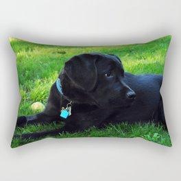 Angus Rectangular Pillow