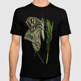 Scarce Swallowtail T-shirt