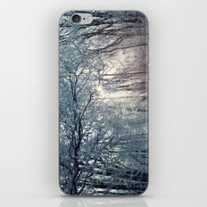 Winter (2) iPhone & iPod Skin