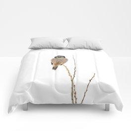 Balanced Comforters