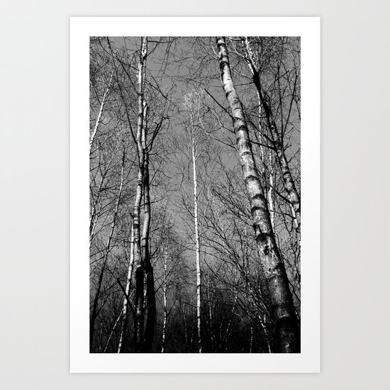 English Trees Art Print