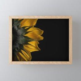 Backside of Sunflower Nature Photo with Brush Strokes Digital Effects Framed Mini Art Print