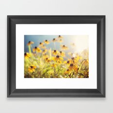 summer susans Framed Art Print