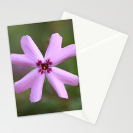 Solitary Purple Phlox Stationery Cards