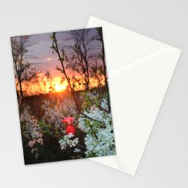 Spring Blossoms Sunset Stationery Cards