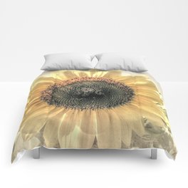 Soft Sunflower Flower Modern Country Home Decor Cottage Art A421a Comforters