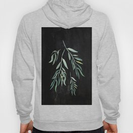 Eucalyptus Branches On Chalkboard II Hoody