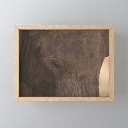 elephant africa Framed Mini Art Print
