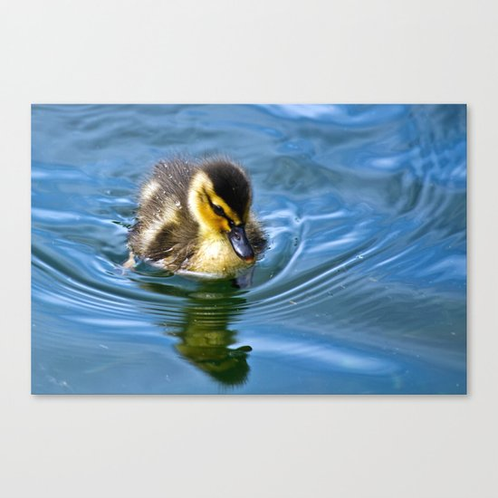 Going Solo Canvas Print