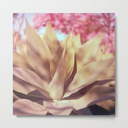 Agave and Cherry Blossoms Metal Print