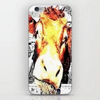 bull iPhone & iPod Skins featuring Bull by TexasDesignsByAmy