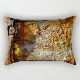 meEtIng wiTh IrOn no28 Rectangular Pillow